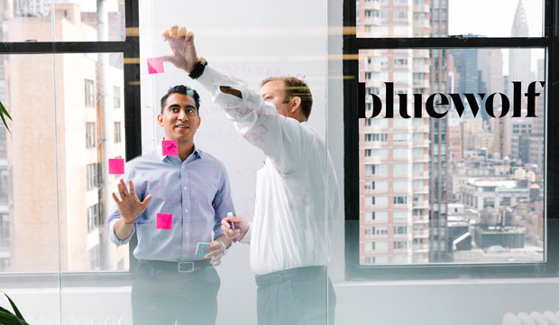 ibm-bluewolf-salesforce-systems-integrator